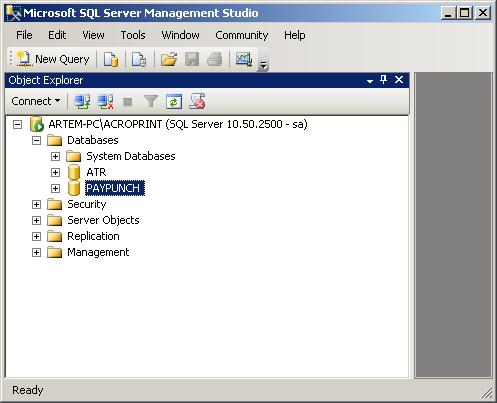 PayPunch_SQL_DB